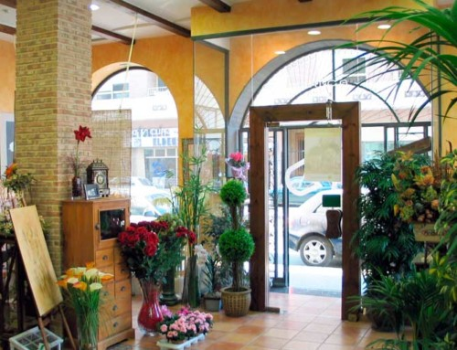 interior design of flower shop – Novelda – Alicante